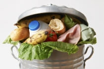 Environmental orgs opine on food waste and carbon use